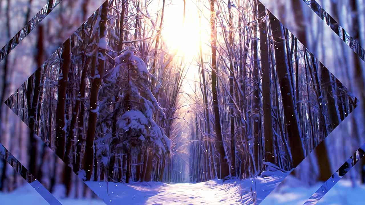 Winter Scenes Three