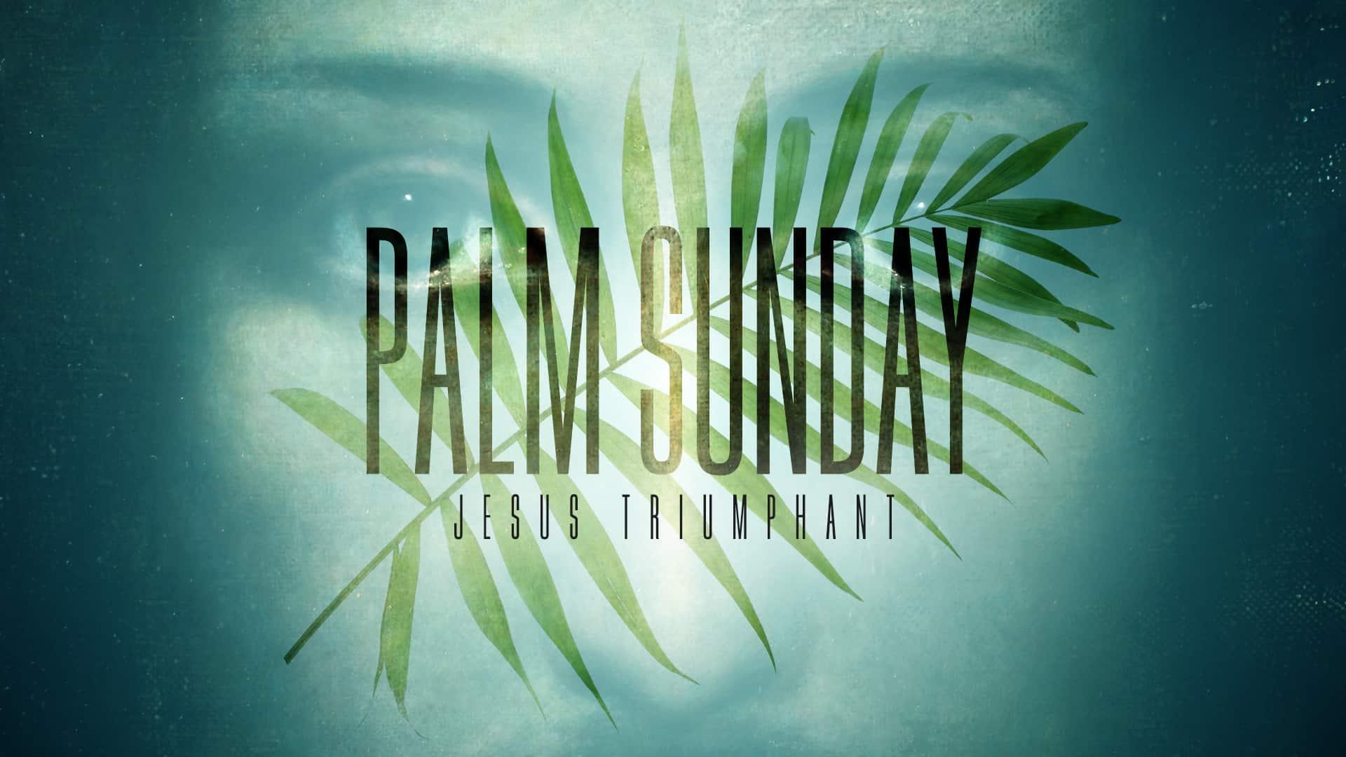 Palm Sunday Graphic Pack • Freebridge Media